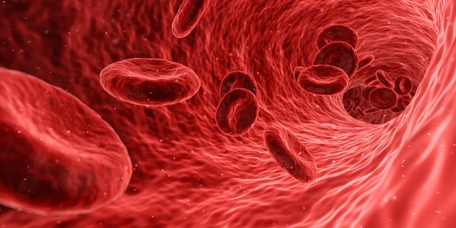 anémie je způsobena nedostatkem červených krvinek