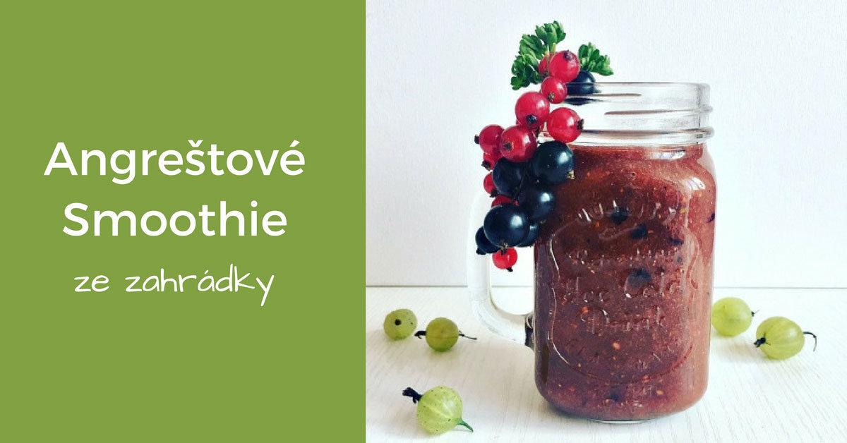 angreštové smoothie ze zahrádky recept