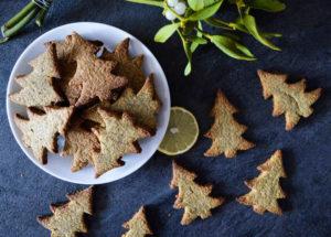 vánoční sušenky s blendeou