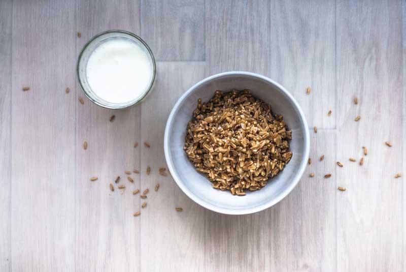 Rýžové mléko, rostlinná mléka