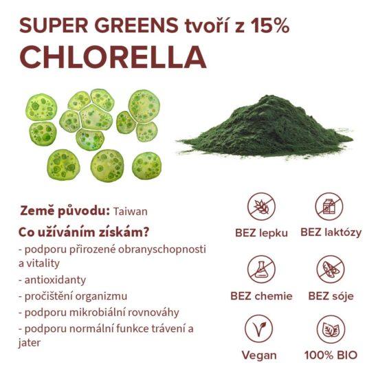 Stručné informace o ingredienci chlorella