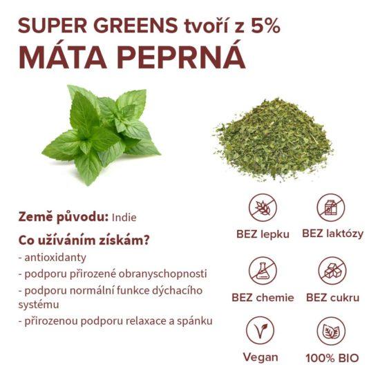 Stručné informace o ingredienci máta peprná