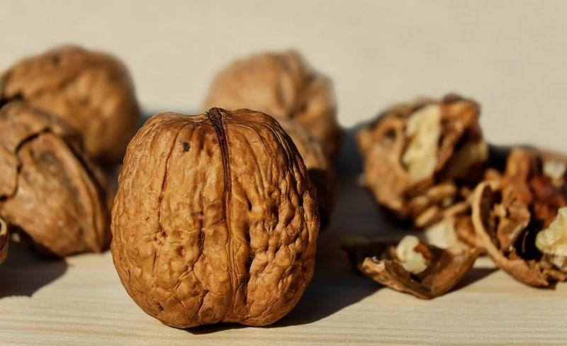 vlašský ořech zdroj tuků