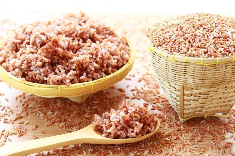 hnédá rýže, zdroj rýžového proteinu