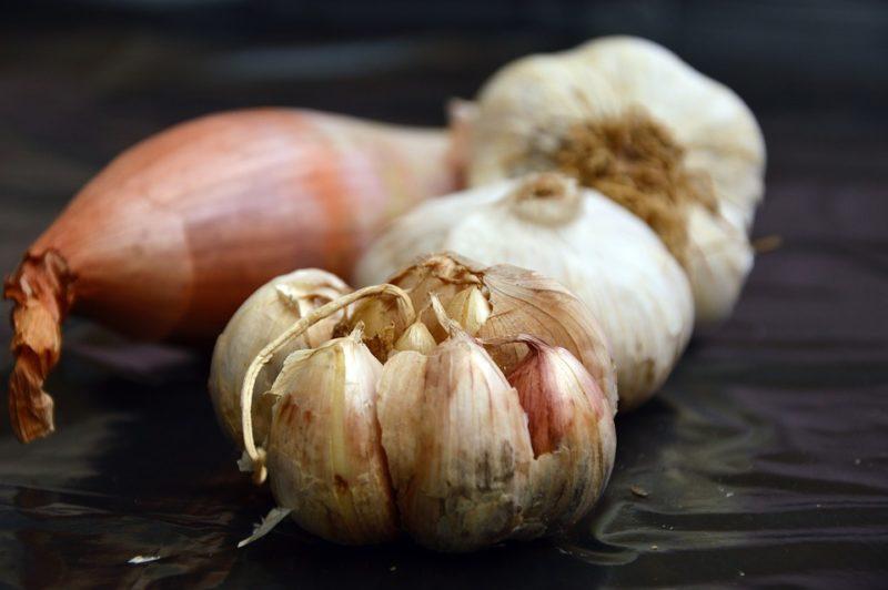 cibule a česnek, zdroje inulinu