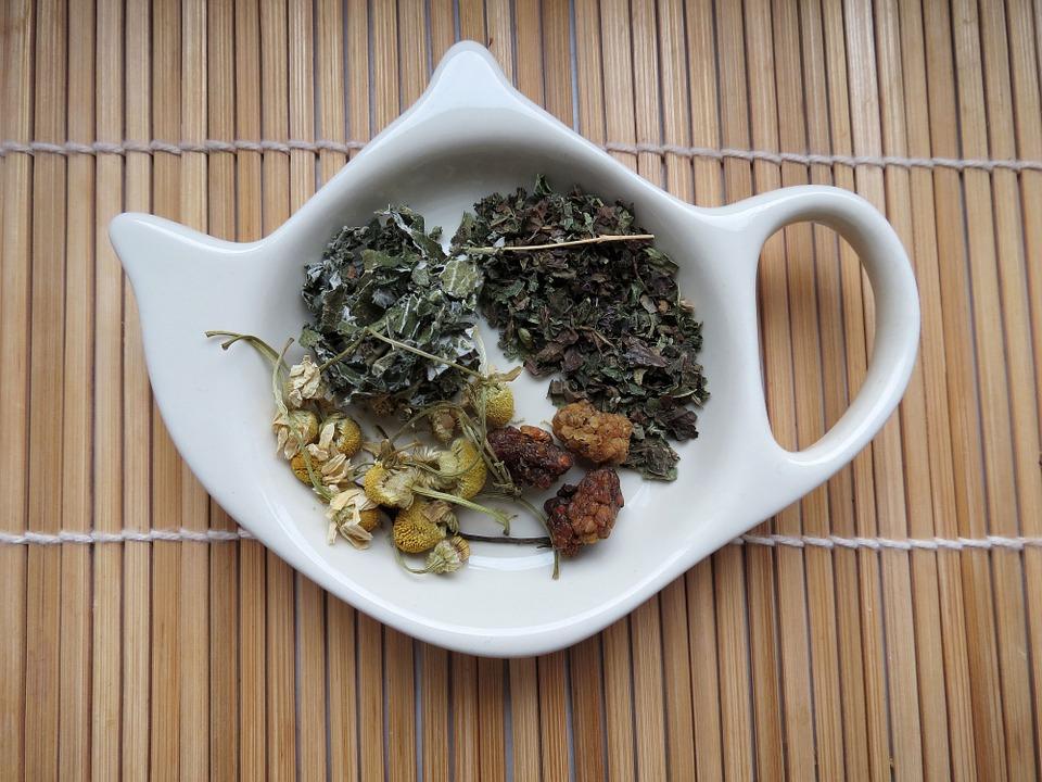 adaptogeny, čaje, prášky