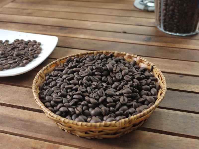 robusta s vysokým obsahem kofeinu