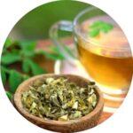 čaj ze sušených moringových listů