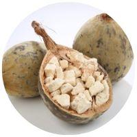 ovoce, plod baobabu